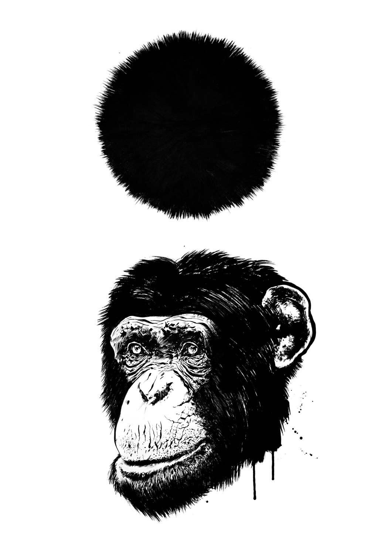 Kornel stadler illustration 1553 - Kornel Illustration | Kornel Stadler portfolio