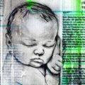 Client Arbeit Embryo 2600 516 1000 Kornel Illustration | Kornel Stadler