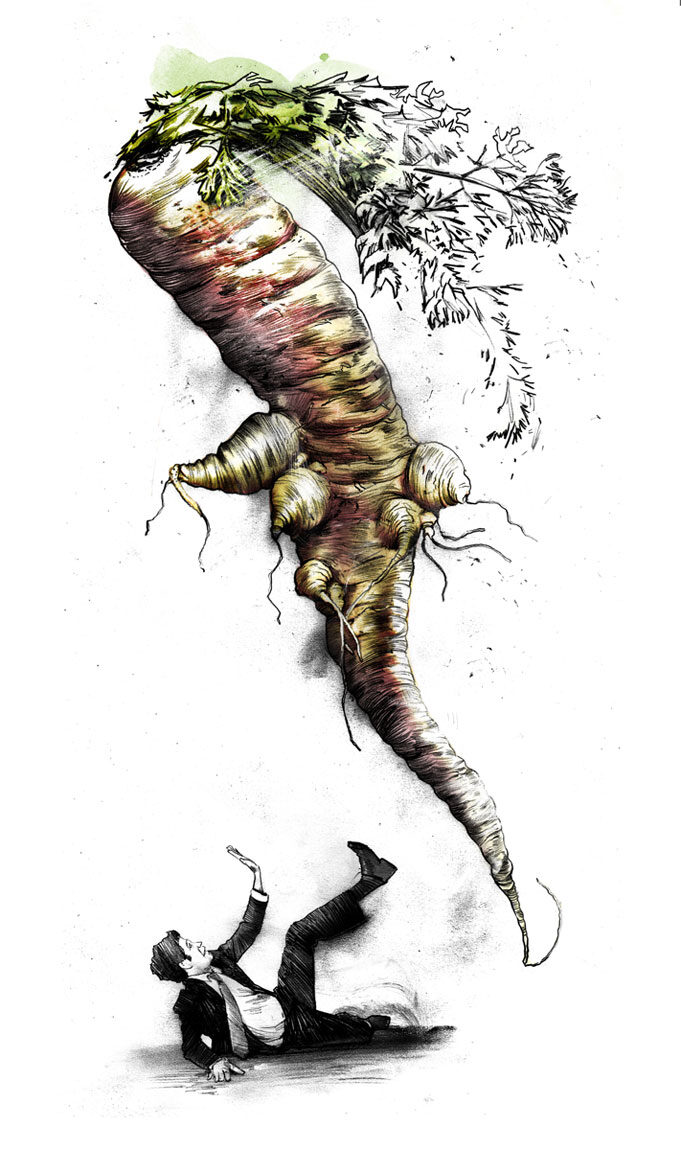 Monsterkarotte - Kornel Illustration | Kornel Stadler portfolio