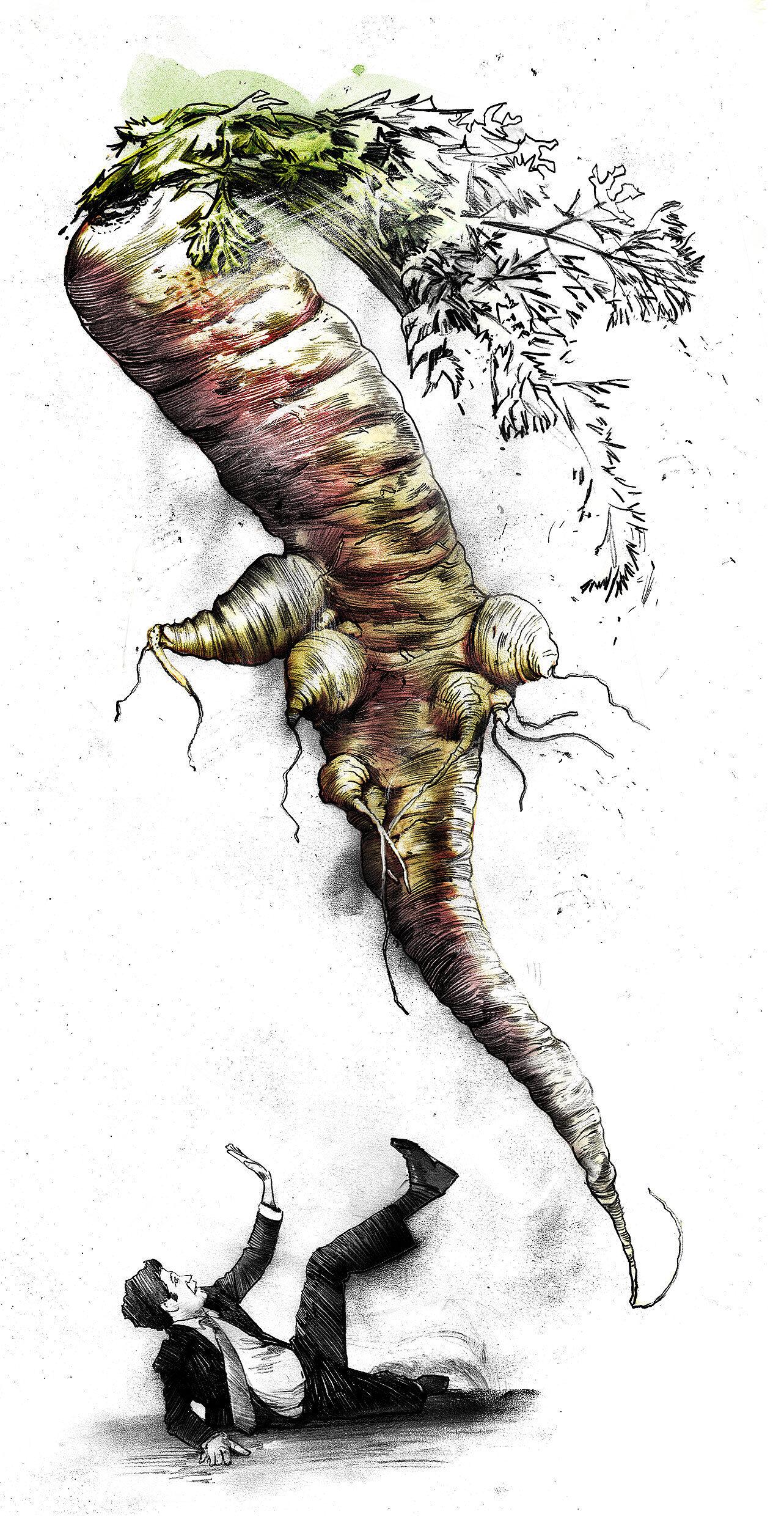 Cerrot panic gene food - Kornel Illustration | Kornel Stadler portfolio