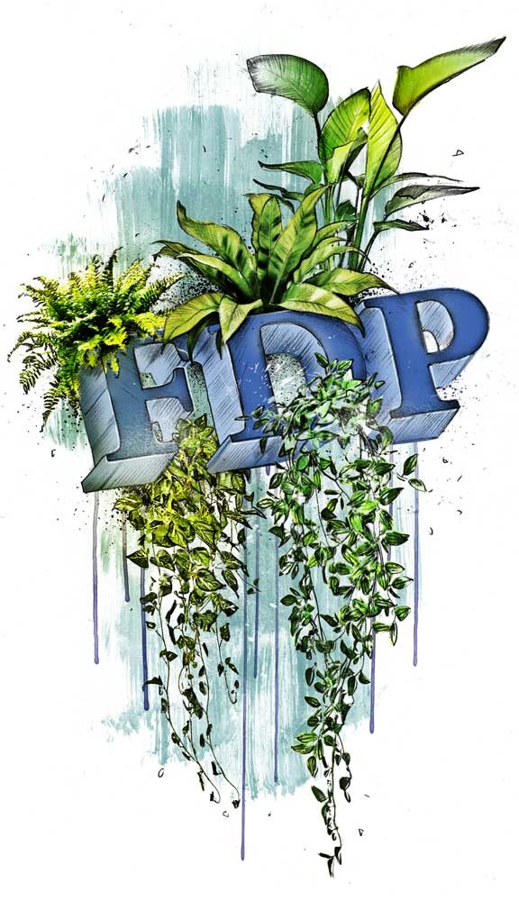 SZ FDP - Kornel Illustration | Kornel Stadler portfolio