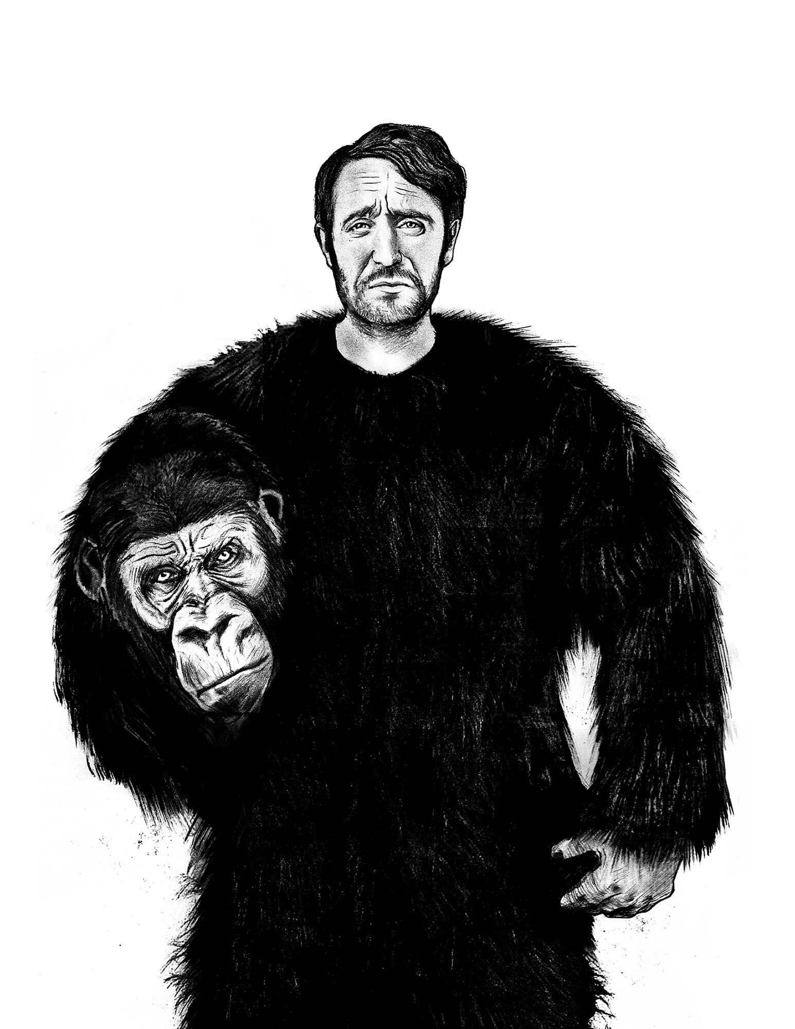 Editorial illustration man ape masculine maskulin - Kornel Illustration | Kornel Stadler portfolio