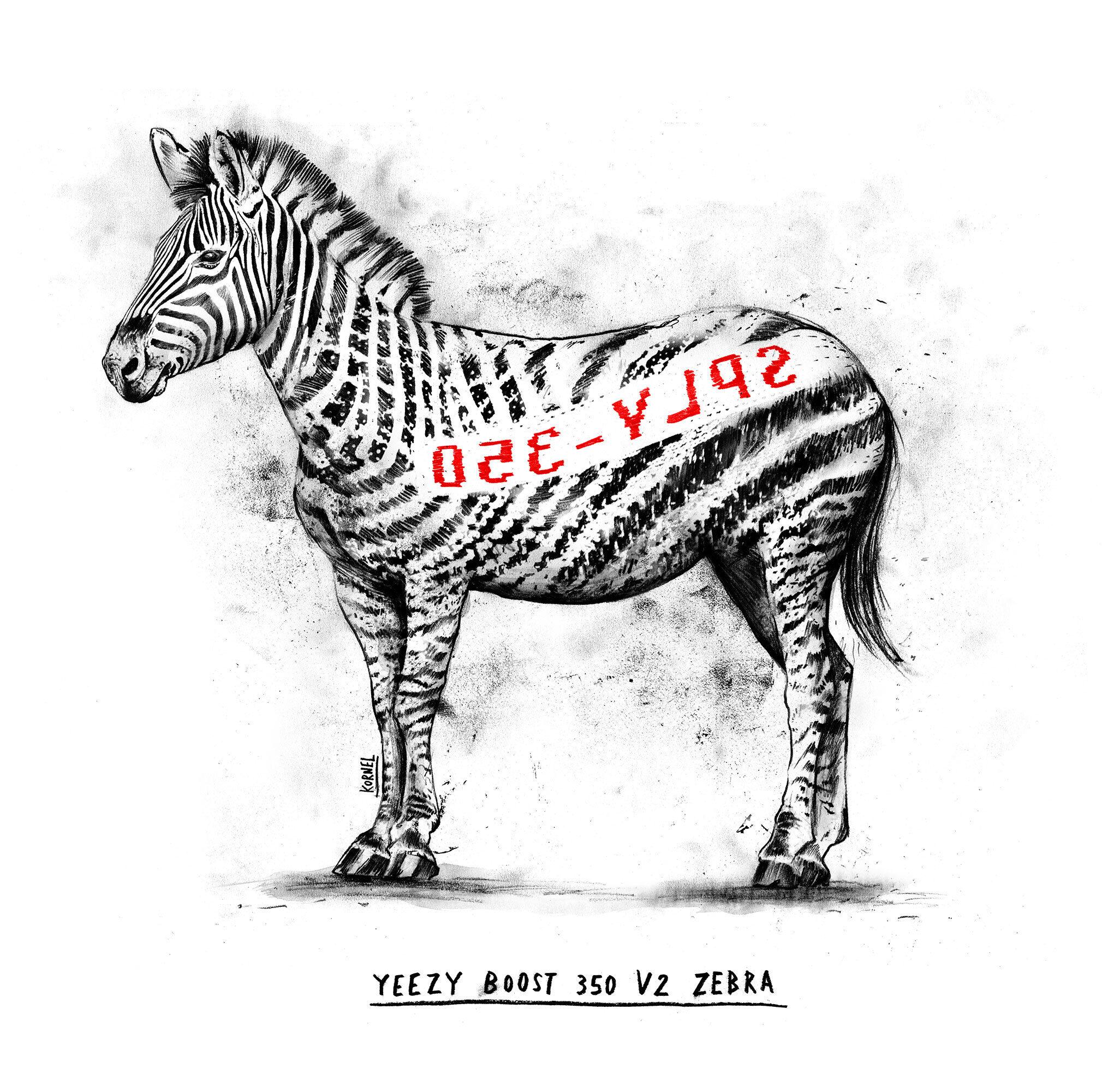 Yeezy boost v2 zebra artwork - Kornel Illustration | Kornel Stadler portfolio