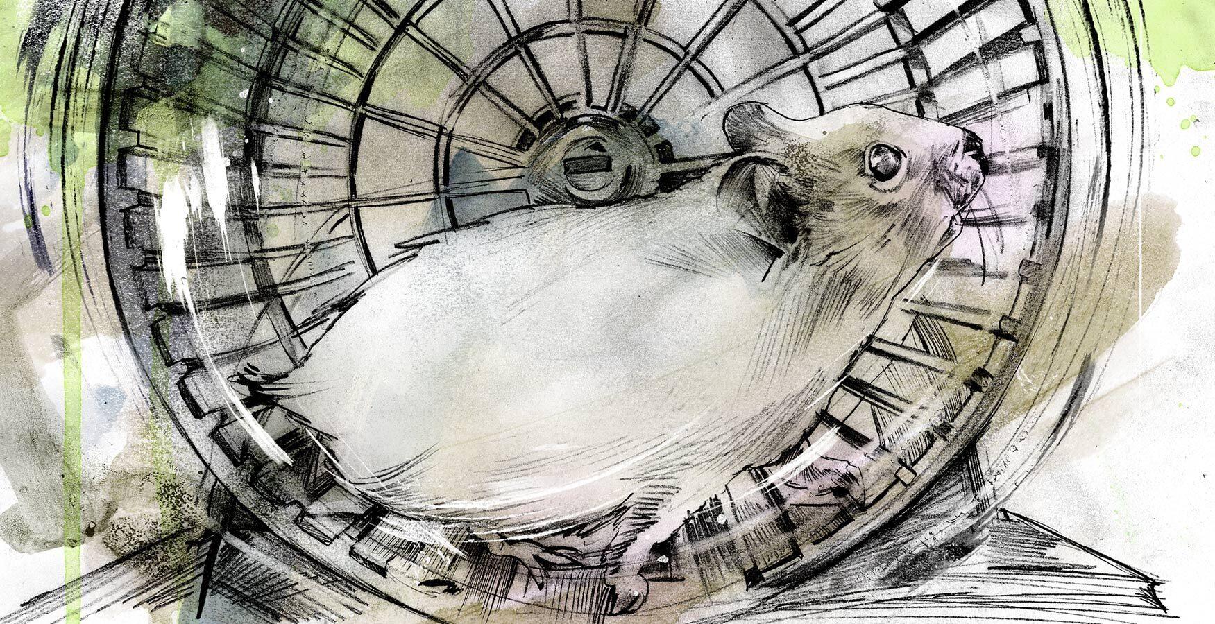 Hamsterrad Manager Editorial Illustration - Kornel Illustration | Kornel Stadler portfolio