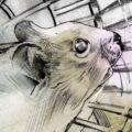 Client Arbeit Hamsterrad 2752 1023 500 Kornel Illustration | Kornel Stadler
