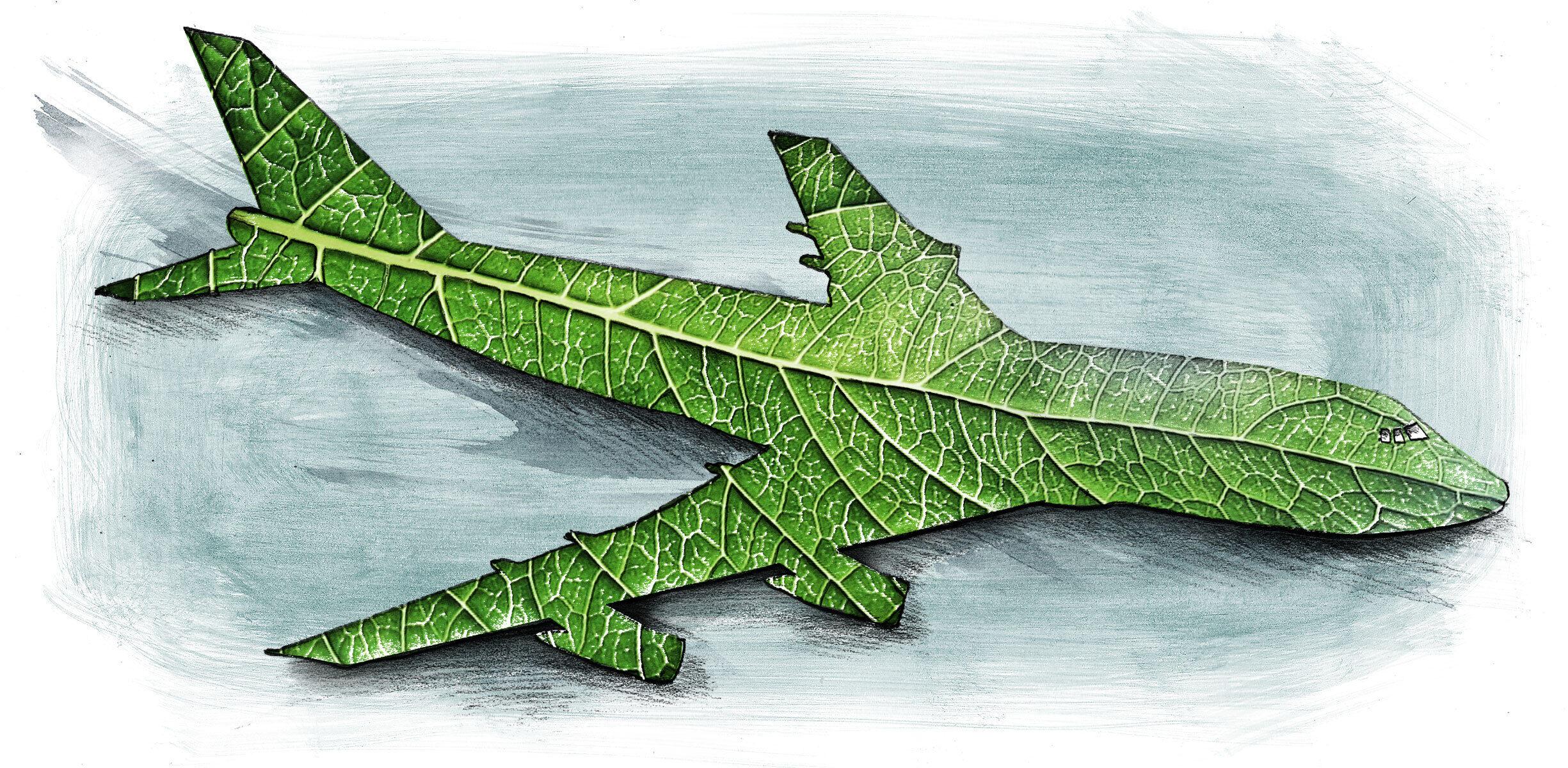 Green airplane - Kornel Illustration | Kornel Stadler portfolio