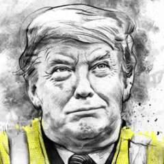 Work Trump gilet jaune web 2907 595 991 Kornel Illustration | Kornel Stadler
