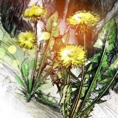 Work Steinbruch Kehrsiten 2485 1545 1100 Kornel Illustration | Kornel Stadler