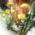 Client Arbeit Steinbruch Kehrsiten 2485 1545 1100 Kornel Illustration | Kornel Stadler