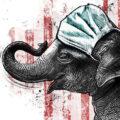 Client Arbeit US Election Kornel Illustration | Kornel Stadler