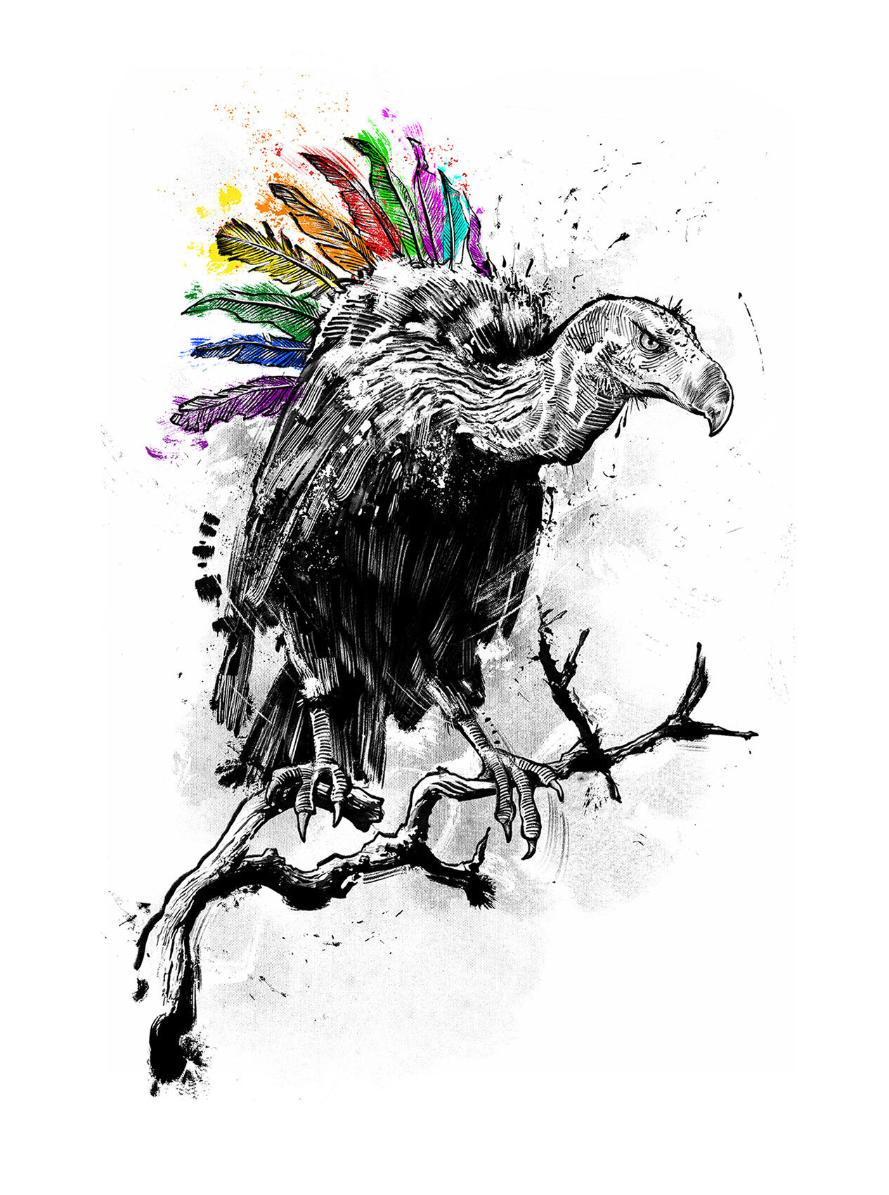 Pride geier illustration diversity rainbow regenbogen vulture - Kornel Illustration | Kornel Stadler portfolio