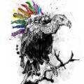 Client Arbeit Pride geier illustration diversity rainbow regenbogen vulture Kornel Illustration | Kornel Stadler