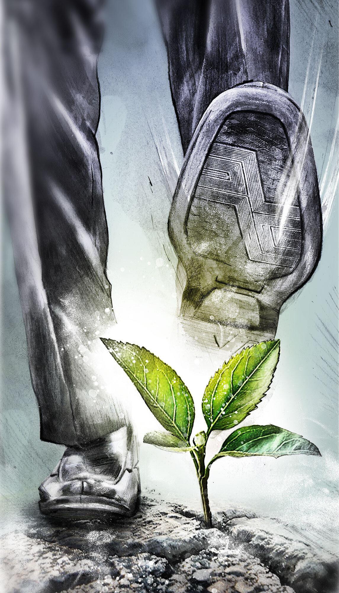 Gruene politik - Kornel Illustration | Kornel Stadler portfolio